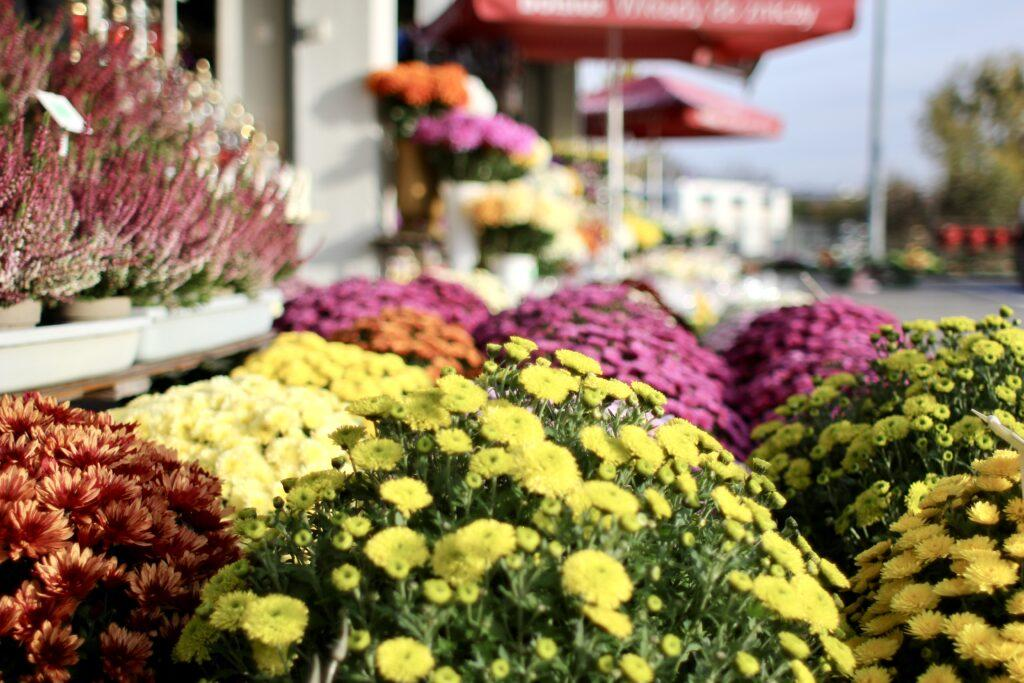 Naturalne kwiaty są najbardziej ekologiczną opcją w ozdabianiu nagrobków.